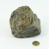 Fossiler Fund Nr.1 70x70x80 mm
